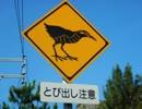 【ゆっくり】徒歩で日本一周part325【国頭】
