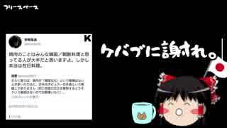 【ゆっくり保守】小沢一郎「国民がおかしい」