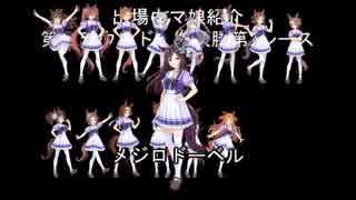 【ウマ娘】第2回トゥインクルシリーズ第