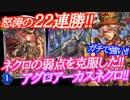 【シャドウバース】22連勝!!ネクロの弱点を克服したアグロアーカスネク...