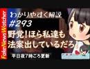 【FNW】まさか!山尾志桜里が野田聖子を出し抜き法案提出!その思惑とは