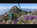 【開山祭の日】八ヶ岳ェ!!お前は俺にとっての新たな里山だ!【1泊2日Part.2】