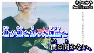 【ニコカラ】きみのかみ【on vocal】