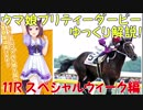 【第11R】 ウマ娘プリティーダービーに登場するキャラクターのモデルになった競走...