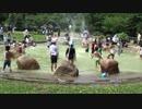 【馬見丘陵公園:北エリア】徒渉池(としょうち) 噴水シャワー⁉で遊ぶあい❤お出かけ 水遊び 無料 外遊び