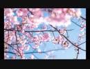 【東方自作アレンジ】追憶の春【弦楽四重奏】