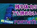 【日刊】初心者だと思ってる人のフォートナイト実況プレイPart11【Switch版Fortnite】