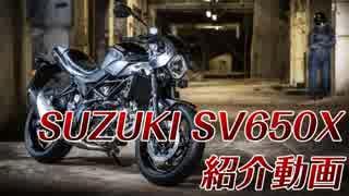 【新車紹介】SUZUKI SV650X, Start Off !!
