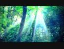 【ヒーリング・ホイッスル】風のとおり道(『となりのトトロ』より)【ケルトのホイッスル・カバー演奏】