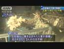 西日本豪雨 広島 土砂崩れや住宅倒壊 1人死亡、10人不明