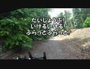 【ゆかり車載】結月ゆかりは英國車と旅に出る Act.3【林道番...
