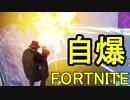 【日刊】初心者だと思ってる人のフォートナイト実況プレイPart17【Switch版Fortnite】