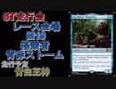 【MtG】ST走行会 レース会場:M19 搭乗者:青赤ストーム VS青白王神【スタンダード】