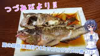 つづみびより ~夏の堤防五目釣り&カサゴ