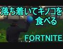 【日刊】初心者だと思ってる人のフォートナイト実況プレイPart24【Switch版Fortnite】