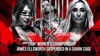 【WWE】カーメラ(ch.)vsアスカ【ER18】