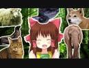 サファリ神社.animals