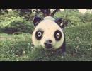 がつらごうち 『千年パンダ』  オリジナル曲