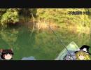 (ゆっくり実況)不定期釣り部part1【きれいダム湖編】