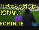 【日刊】初心者だと思ってる人のフォートナイト実況プレイPart40【Switch版Fortnite】