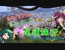 【東北きりたん】きりたん&ずん子と行く!春の尾道旅行 その8「桜土手~階段の道...