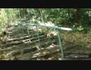 あわしま神社階段の登り