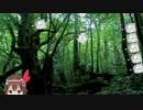 友人Aの森