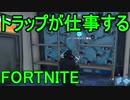 【日刊】初心者だと思ってる人のフォートナイト実況プレイPart43【Switch版Fortnite】