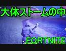 【日刊】初心者だと思ってる人のフォートナイト実況プレイPart46【Switch版Fortnite】