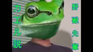 野獣先輩カエル説.frog