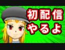 【バーチャルYoutuber】【告知】週末に初配信するよ!!【#29】