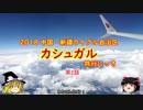 中国・カシュガル旅行にっき 第2話 北京→カシュガル便でトラブル