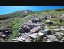【南アルプス】仙丈ケ岳・テント泊登山・その3(カール地形と雷鳥編)