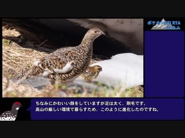 【ゆっくり】ポケモンGO 立山山頂攻略RTA + 室堂山&浄土山登山欲張りセット(前編)