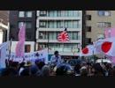 日本第一党vs反天連 ~平成最後の大決戦?~(2)