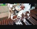 【マリンバ】ブリキノダンス!(多視点クリップ)