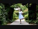 【星夜】ワールドワイドフェスティバル【踊ってみた】