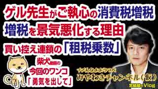 ゲル先生がご執心の消費税増税。日本経済に大ブレーキの「租税乗数」|マスコミでは言えないこと#190