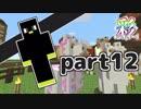 【Minecraft】いろどりクラフト【チーム実況】Part12