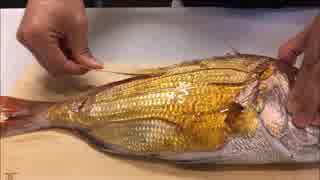 【こぢゃ】ブラジリアンワックスで魚のウ