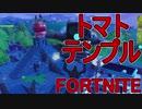 【日刊】初心者だと思ってる人のフォートナイト実況プレイPart64【Switch版Fortnit...