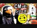 鳥の自作着ぐるみでお酒のCM風動画【日本の夏、グルメ編15秒版】〜発泡酒 麦一番〜【Fursuit bird eagle】