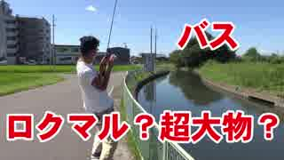 【バス釣り】ロクマル超大物?が釣れた!