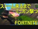 【日刊】初心者だと思ってる人のフォートナイト実況プレイPart71【Switch版Fortnit...