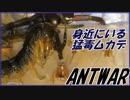 超猛毒!身近に潜むアオズムカデの危険性。