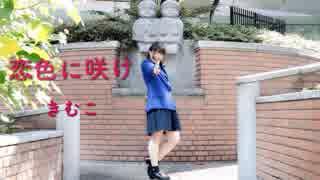 【きむこ】恋色に咲け【3年生】