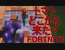【日刊】初心者だと思ってる人のフォートナイト実況プレイPart73【Switch版Fortnite】