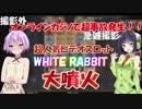 【オンラインカジノ】あのWHITE RABBITが撮影外で超事故発生【結月ゆかり・京町セイカ】