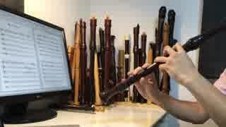 【全部俺の笛】リコーダー多重録音で オクトパストラベラー「優しさに包まれて」 thumbnail