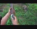 新米猟師が猟銃でイノシシ止め刺し